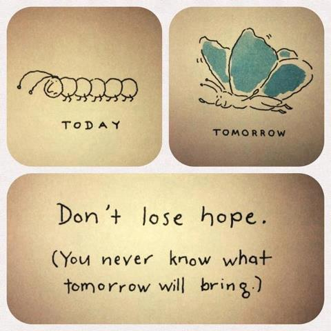Dont lose hope quote