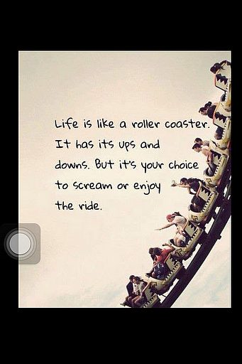 roller coaster life quotes