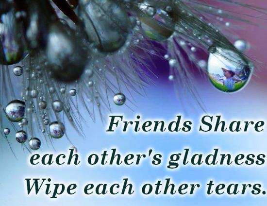 Friends Share Gladness - Quote Picture