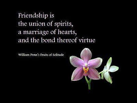 Friendship Is The Union Of Spirits