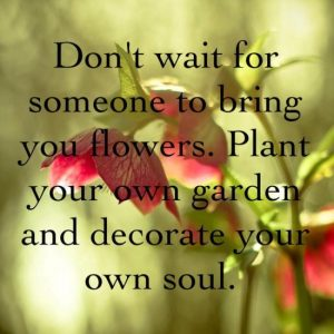 Plant Your Own Garden