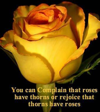 Roses thorns picture quote