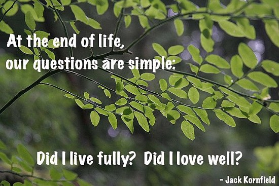 End Of Life Question Quote