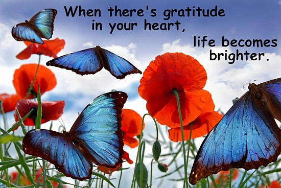 Gratitude Hearth Quote