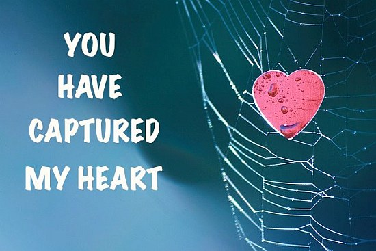 Heart in spider net