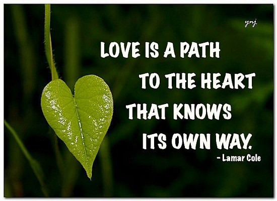Path way love quote