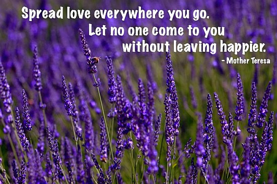 Spread Love Everywhere You Go | Quote Picture