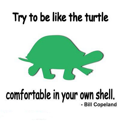 Comfortable in your own shell quote