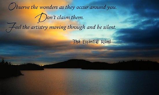 observe wonders