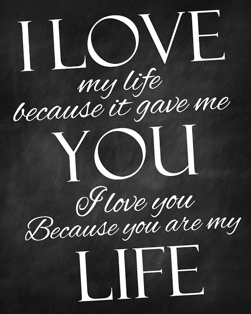 The Love Of My Life Quotes Interesting I Love My Life Because It Gave Me You  Quote Picture