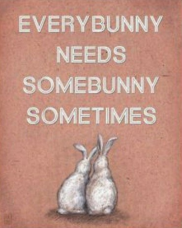 bunny love quote