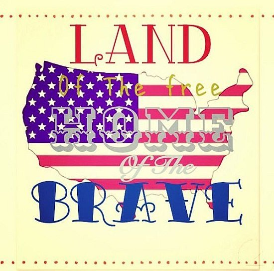 home brave usa quote